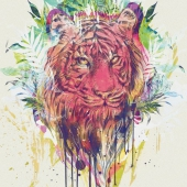 amazing-animals-art-artwork-Favim.com-1068792